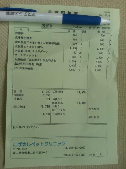 DCIM0050_20140622180401afd.jpg