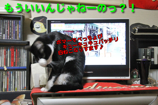 IMG_0243_Rもういいんじゃねーのっ?!