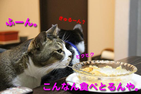 IMG_0057_Rこんなん食べとるんや。