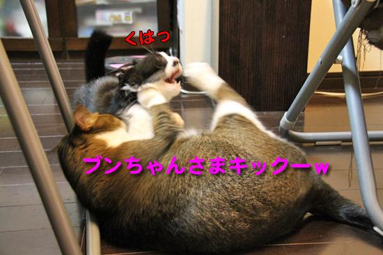 IMG_0092_Rブンちゃんさまキックー
