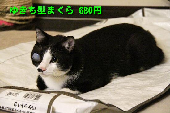IMG_0111_Rゆきち型まくら 680円
