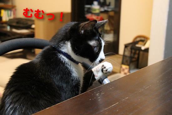 IMG_0048_Rむむっ!