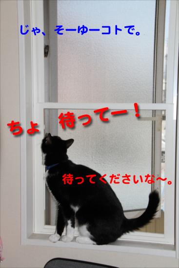 IMG_0249_Rじゃ、そーゆーコトで。待って!