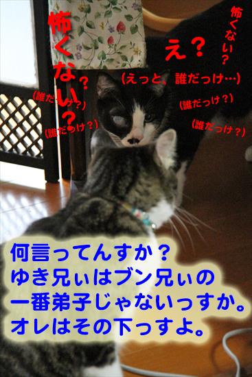 IMG_1063_R(えっと、誰だっけ…)