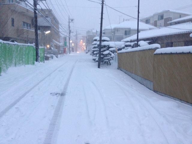 2014_2大雪の景色