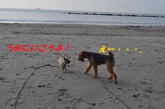 20140706御前崎海12