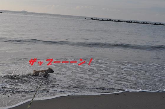 20140706御前崎海10