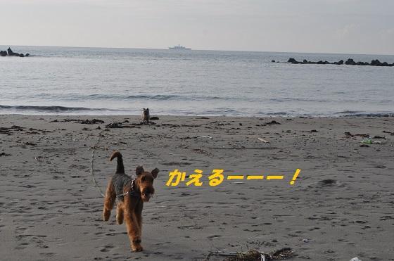20140706御前崎海15