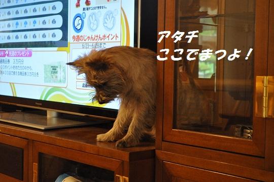 2014_06_24_1.jpg