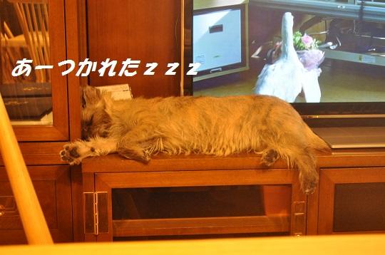 2014_06_24_13.jpg