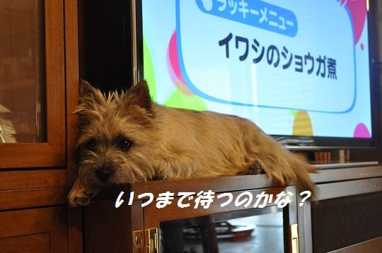 2014_06_24_4.jpg