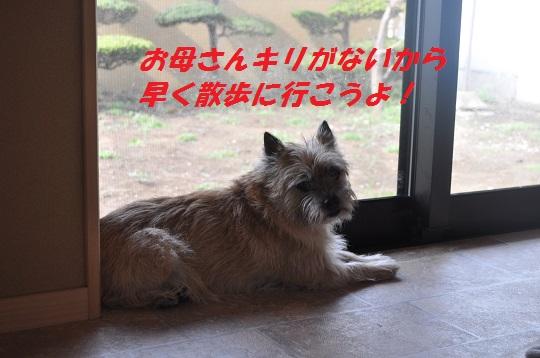 2014_06_24_6jpg.jpg