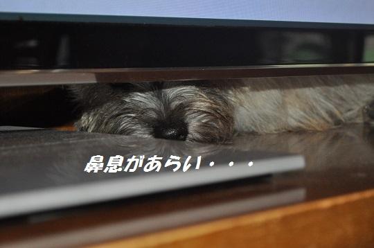 2014_06_24_9.jpg