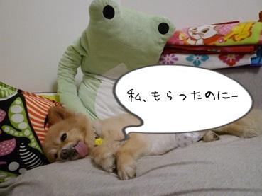 kinako140628_2.jpg