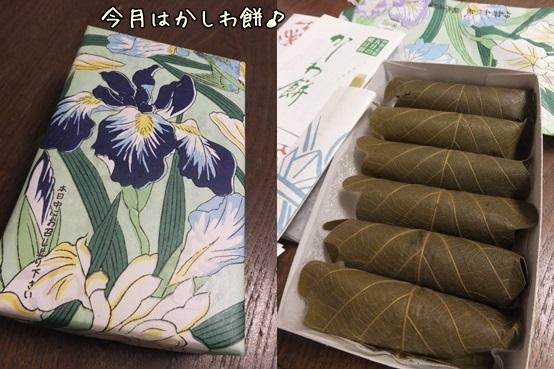 tuitachi1405-horz.jpg