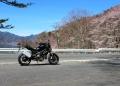 中禅寺湖の桜