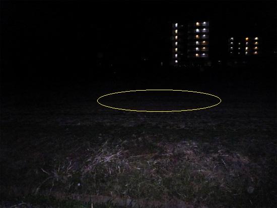 2014.03.07夜鴨2