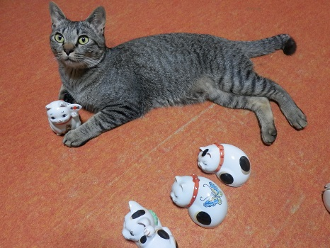猫の陶器3