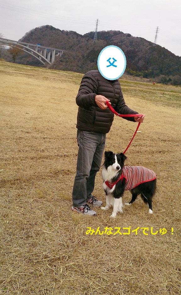 s-IMG_20140222_205610.jpg
