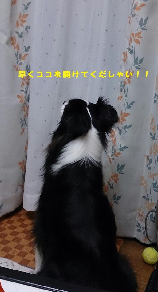 s-IMG_20140328_194040.jpg