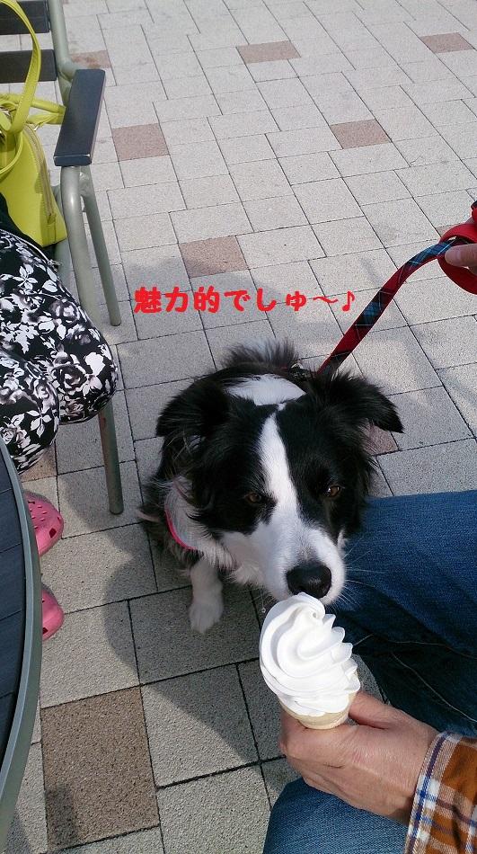 s-IMG_20140414_205514.jpg