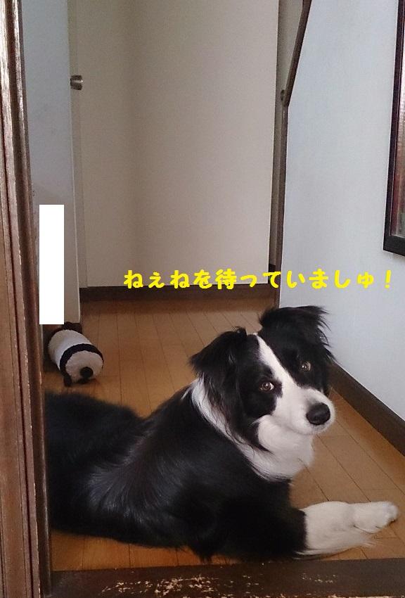s-IMG_20140415_201140.jpg