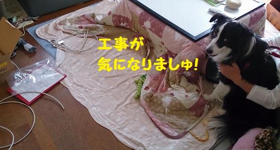 s-IMG_20140504_200749.jpg