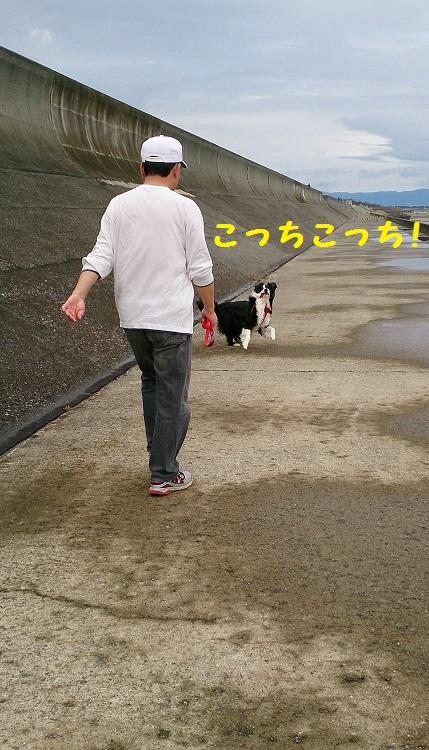s-IMG_20140607_191711.jpg