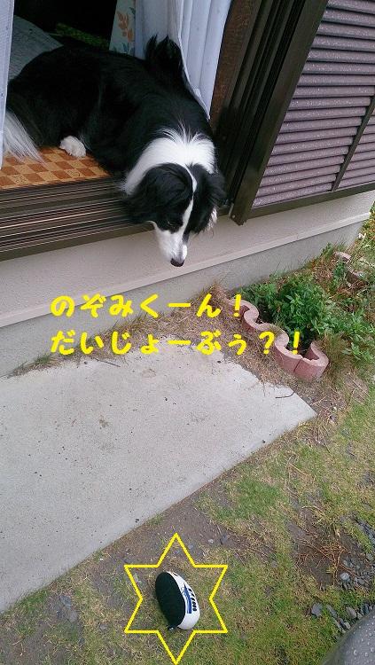 s-IMG_20140629_191246.jpg