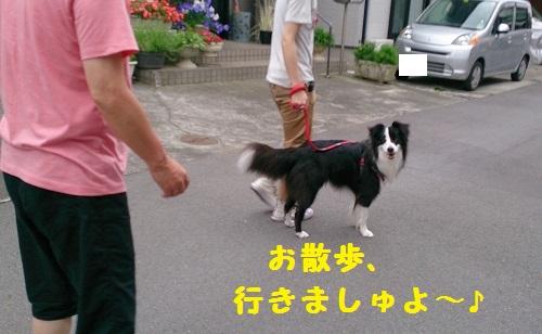 s-IMG_20140713_194339-1.jpg