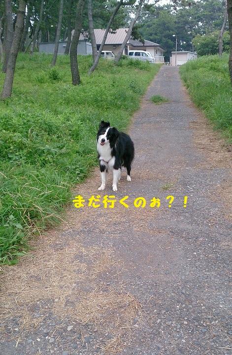 s-IMG_20140726_184536.jpg