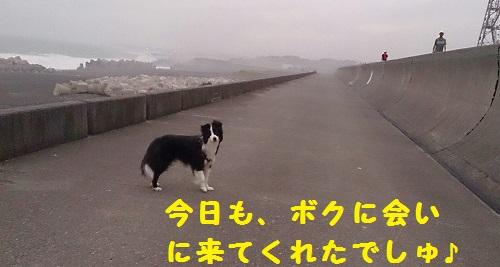 s-IMG_20140807_193946.jpg