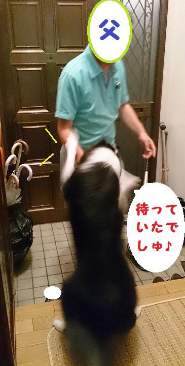 s-IMG_20140814_221215.jpg