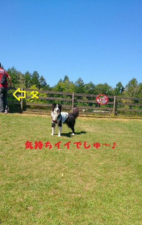 s-IMG_20140822_205920.jpg