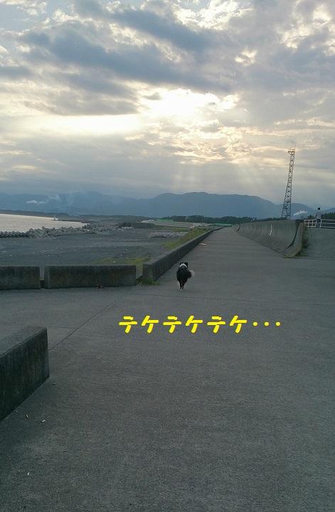 s-IMG_20140830_194748.jpg