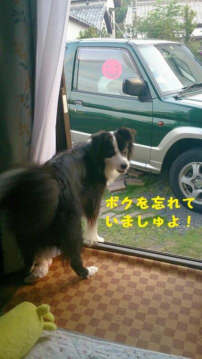 s-IMG_20140907_173032.jpg