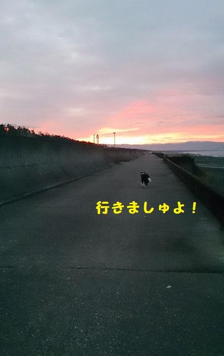 s-IMG_20140908_193136.jpg