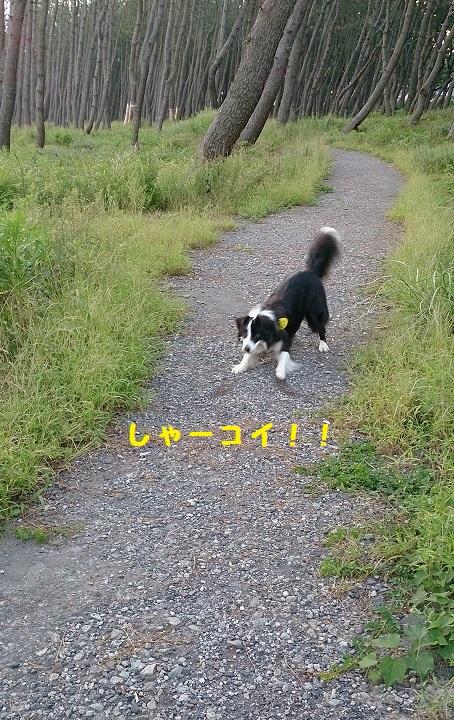 s-IMG_20140913_185559.jpg