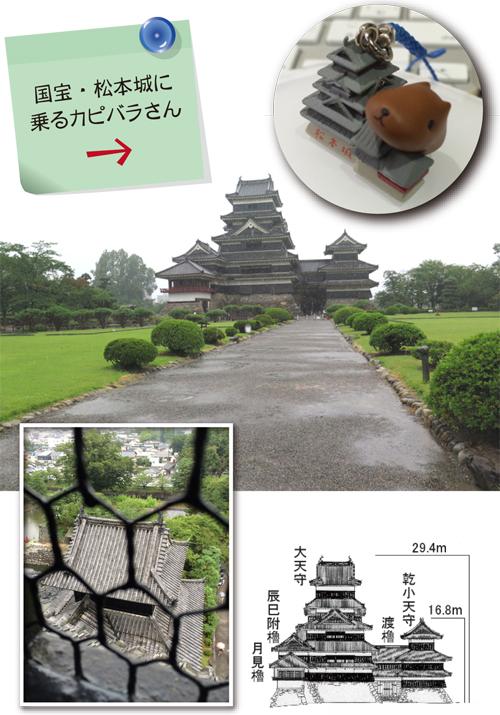 2014-0816-1.jpg