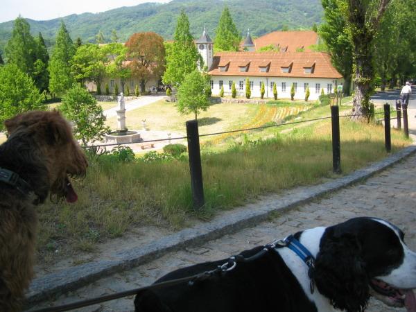 ドイツの森公園