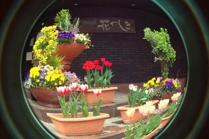 花やしき玄関