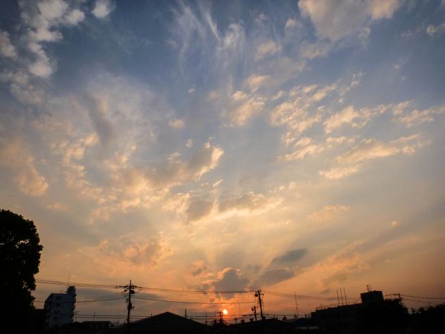 tongarashi5_01.jpg