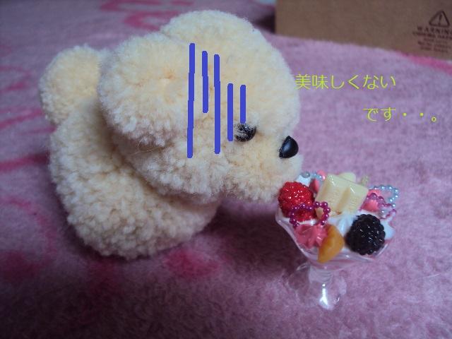 DSC04855.jpg