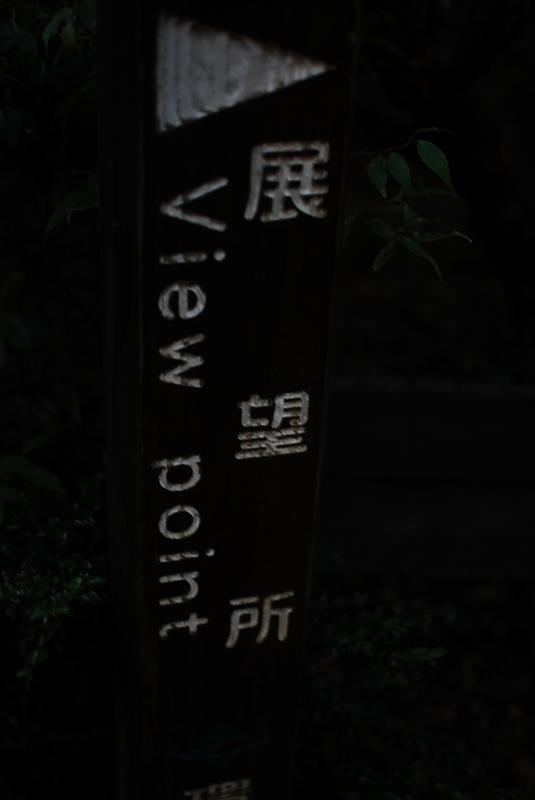 YAKU1DSC_0677.jpg