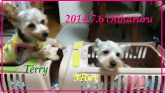 20140706-2.jpg