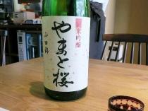14-4-16 酒桜