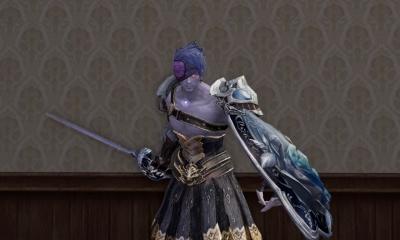 薔薇長剣と盾形状ゲットー