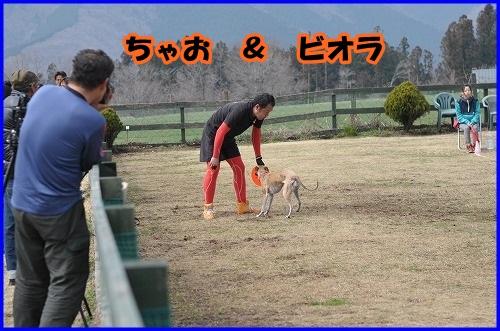 DSC_1100_20140402232404de1.jpg