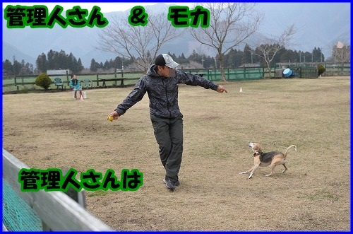 DSC_1300_20140402232636b2c.jpg