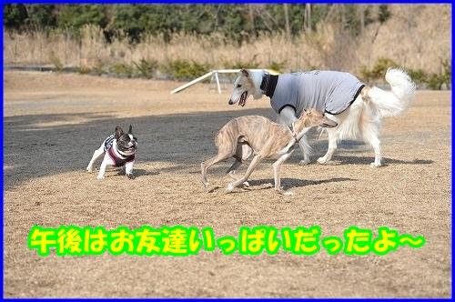 DSC_2953.jpg